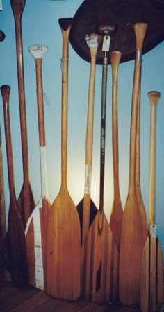Varnished Canoe Paddles